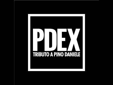 13.03 - Pdex